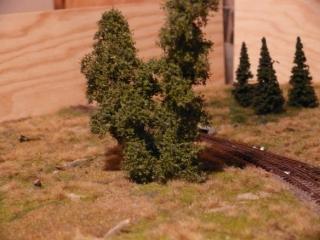 odbocka-stromy-3