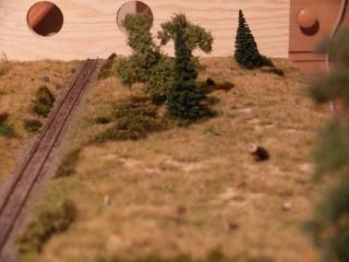 odbocka-stromy-4